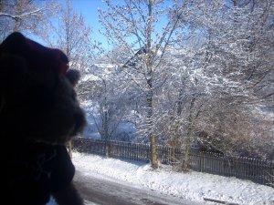 Jack Bearow und der Schnee...