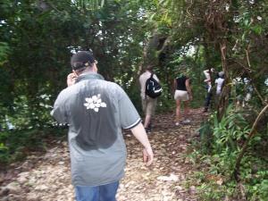 Belize Dschungel