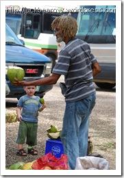 Rastaman-Kokosnuss