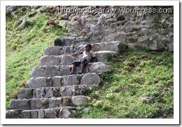 zuviele-Stufen