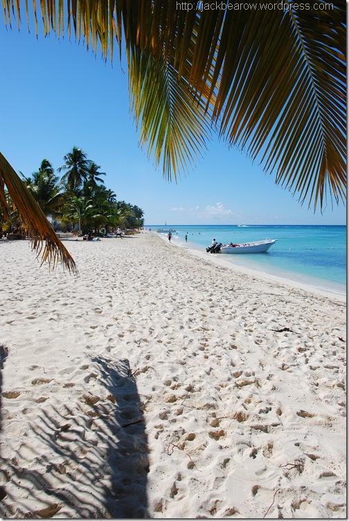 Isla Saona - Saona Island - Saona Beach -Strand - Traumstrand