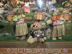 16_JackBearow-Teddy-Bear-World-Hawaii-Waikiki-Honolulu-Oahu