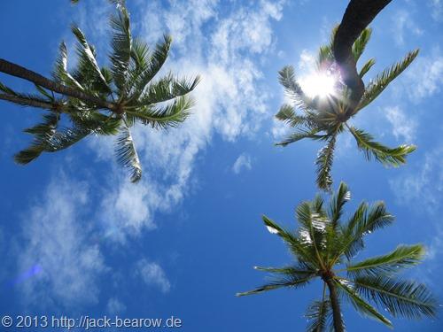 97_Himmel-Palmen-Hawaii